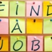 JobsDaily-7.jpg