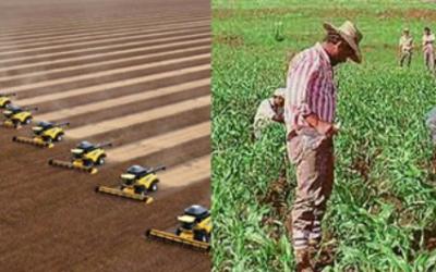 Seguridad y soberanía alimentaria