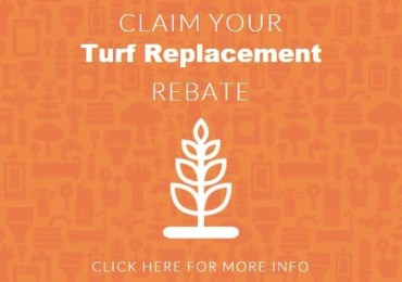 Millions in Turf and Toilet Rebates Still Available