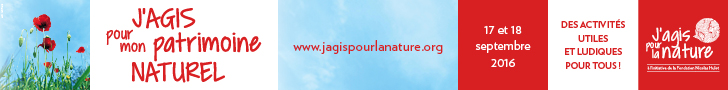 jagis-patrimoine-728x60-1