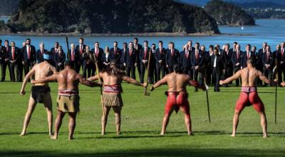 Lions coming to terms with way of life in New Zealand ...