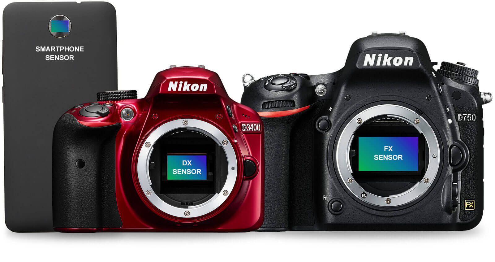 Divine Phone Sensor Dx Sensor Fx Sensor Dslr Cameras Nikon Dx Vs Fx Focal Length Dx Vs Fx Camera Body dpreview Dx Vs Fx