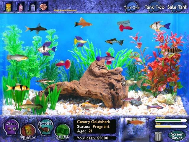 Fish Tycoon  data-recalc-dims=