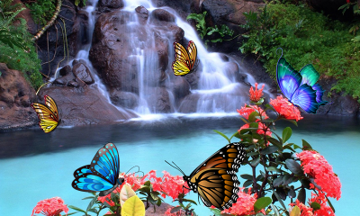 3D Butterfly Live Wallpaper 1.4 APK Download - Android Personalization Apps
