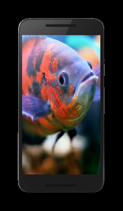 Aquarium Live Wallpaper 4.0 APK Download - Android Personalization Apps