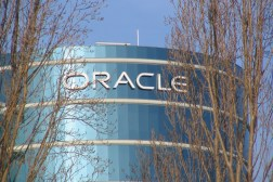 Oracle Google Appeal