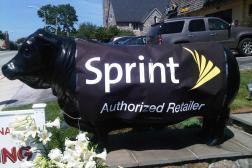 Sprint FCC fine