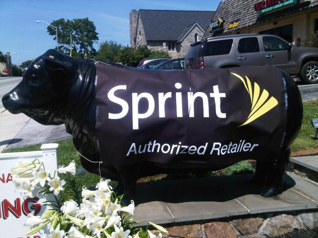 Sprint Unlimited Data Plan