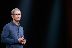 Apple CEO Tim Cook Criticism