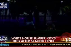 Dog Kicked White House Fence Jumper