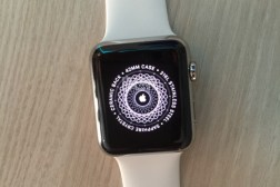 Apple Watch Online Setup Appointments