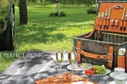 Aston Martin Picnic Basket