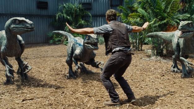 Real Jurassic Park Chicken Dinosaurs