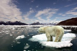 Climate Change Facts 2016