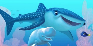 Finding Dory (Movie) Review 6