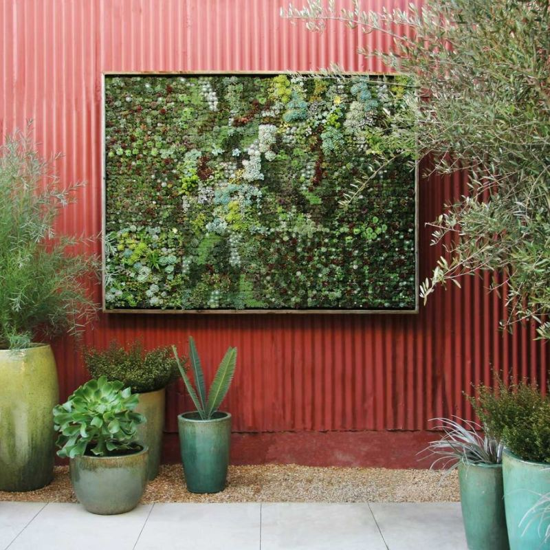 Large Of Vertical Gardens Solutions