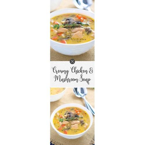Medium Crop Of Chicken And Mushroom Soup