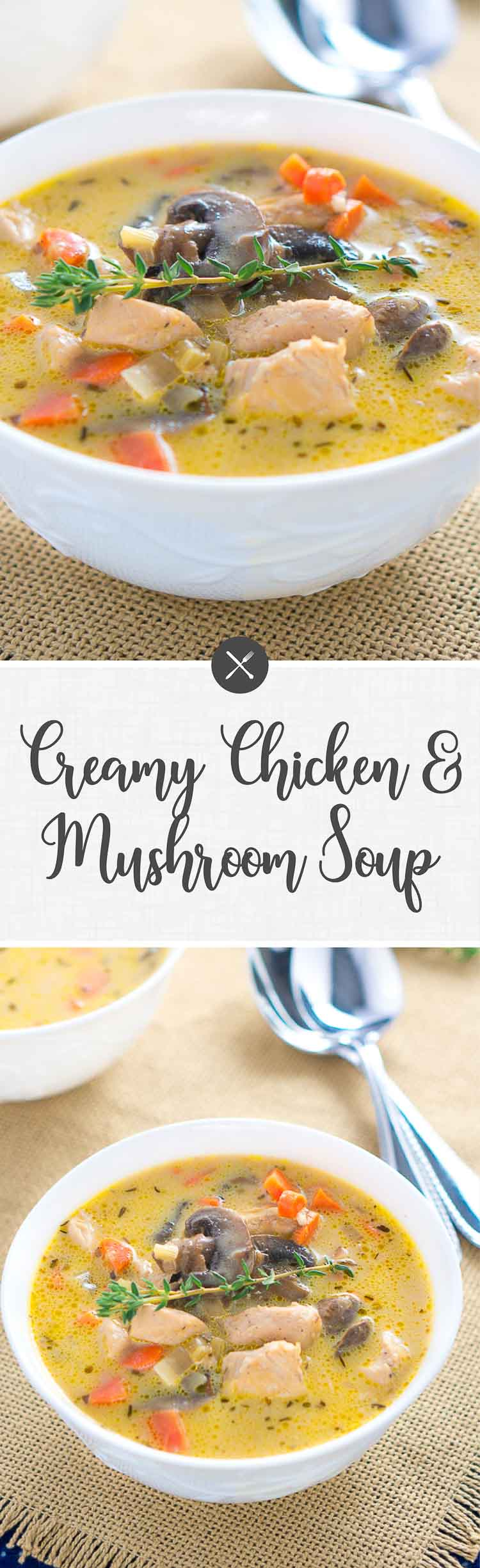 Large Of Chicken And Mushroom Soup