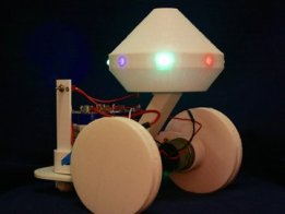 Blinky, the Companion Robot