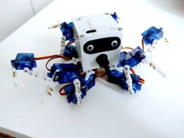 Henk the Hexapod