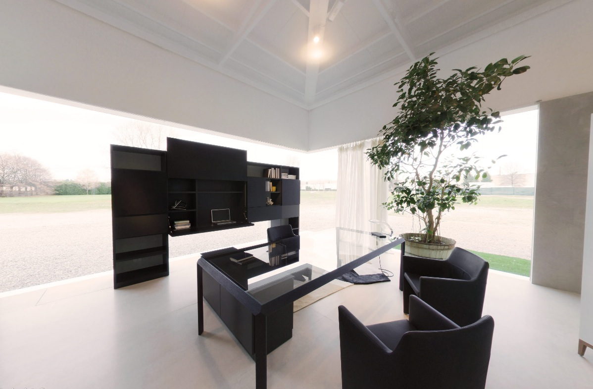 modern black office space with juvenille tree in pot and glass table home design displaying