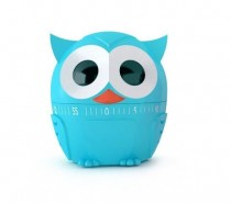 Kikkerland's cheerful Owlet kitchen timer will let you know when it's time to check the oven.