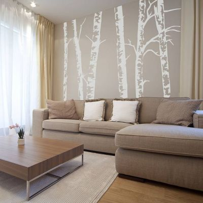 Birch Wood Walls That Make Spaces Feel Like Silent Forests