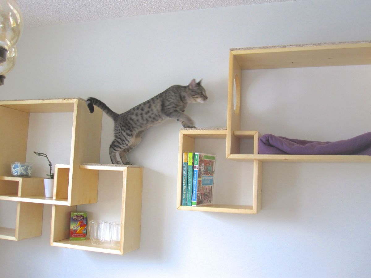 Fullsize Of Modern Wall Mounted Bookshelves