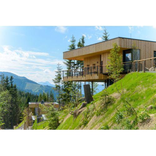 Medium Crop Of Landscape Images For Homes