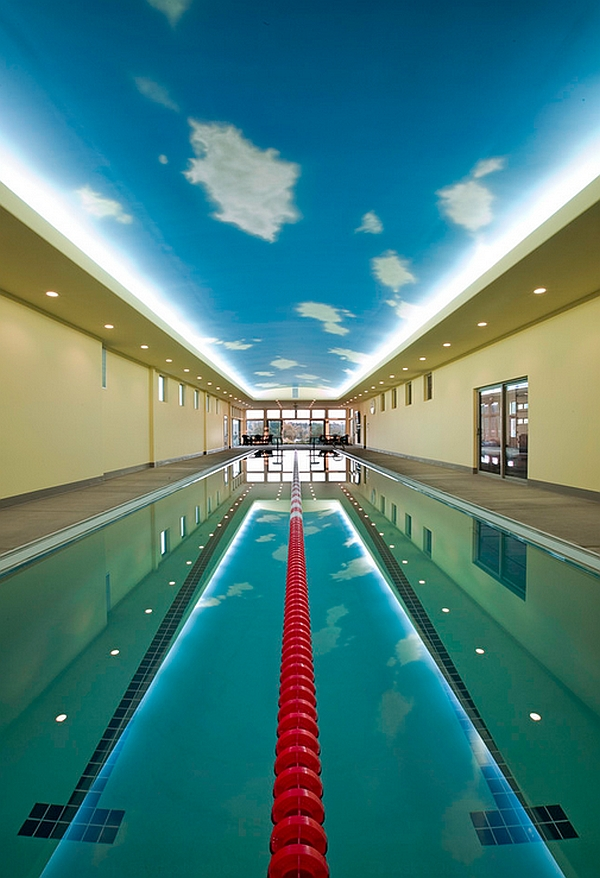 olympic size swimming pool for on decor