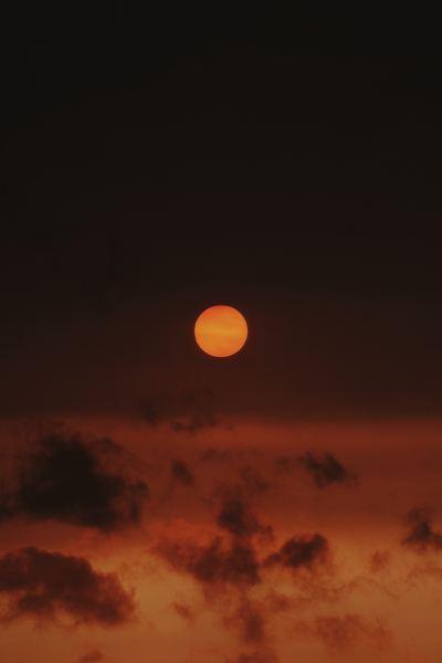 Sunset Over Richmond Park iPhone Wallpaper - iDrop News