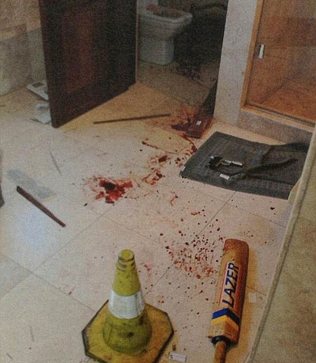 Pistorius allegedly used the cricket bat to attack Steenkamp before her death