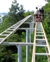 http://www.dailystar.co.uk/travel/adventure/522668/Scariest-rollercoaster-world-Japan-cycle-track