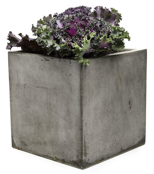 Medium Of Tall Outdoor Planters
