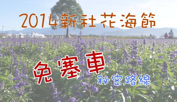 Sea-of-flowers-in-Xinshe-2014
