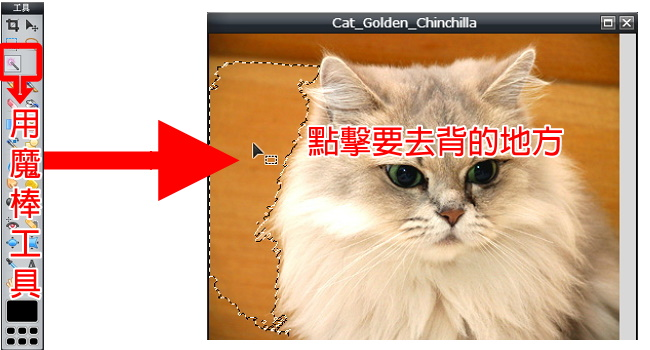photo editor online去背教學 (4)