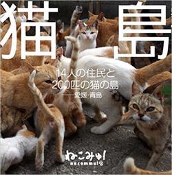 青島貓咪寫真集
