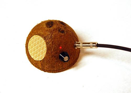 coconut_amp.jpg