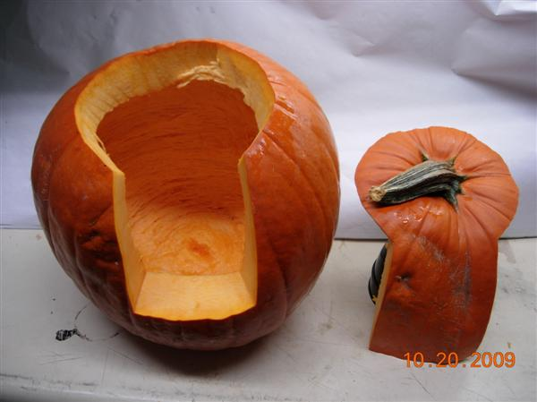 Perfect Pumpkin Cut.jpg