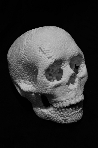 fabioviale_skull.jpg