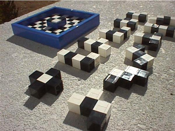checked_pentominoes_2.jpg