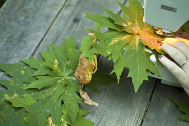craftzine_leaf_garland_05.jpg