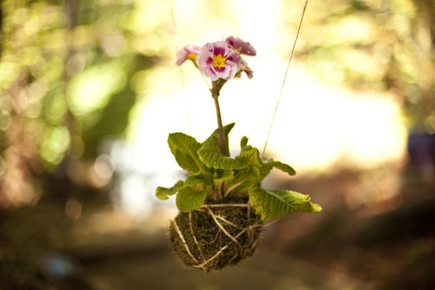 craftzine_string_garden_11.jpg