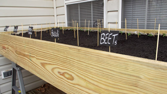 poppytalk_recycled_door_raised_bed_garden.jpg
