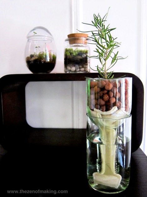 recycled_wine_bottle_planter_3_flickr_roundup.jpg