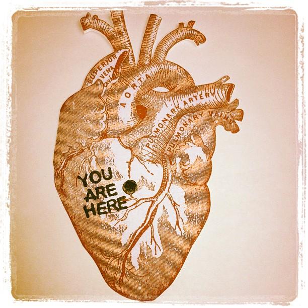 anatomical heart valentine