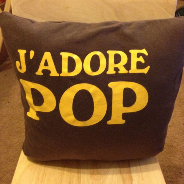 I made this pillow out of a t-shirt I found at a thrift store. I love thrift stores and this one was just screaming my dad. The colors also happen to work with his newly redesigned basement (which flooded last year).
