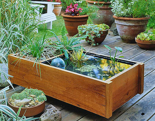 apartment_therapy_water_garden_01