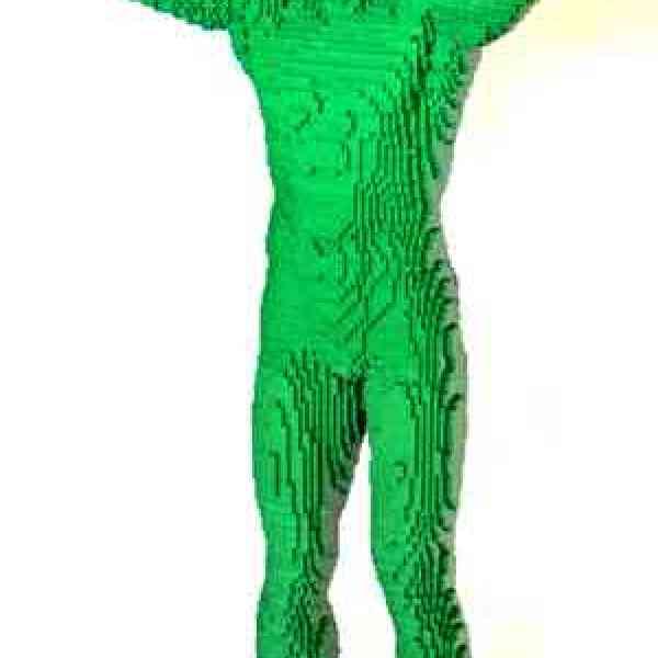 nathan sawaya green