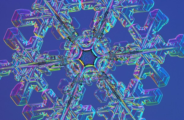 Ken Libbrecht snowflake2